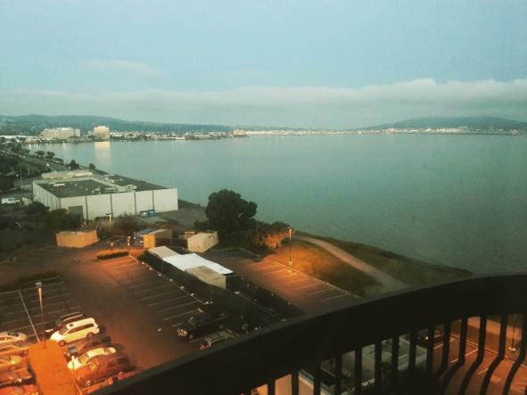 The View at the Embassy Suites | OhMarieOH