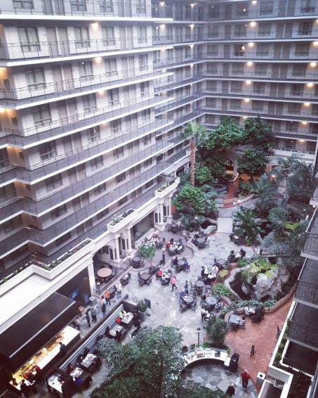 A View from 8th Floor at the Embassy Suites | OhMarieOH